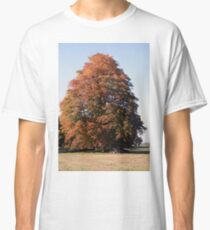 Autumn Tree Classic T-Shirt