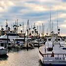 Oceanside Harbor by Donovan Olson