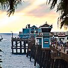 Sunset at Oceanside Pier by Donovan Olson