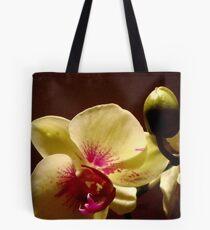 ORCHID - phalaenopsis II   ^ Tote Bag
