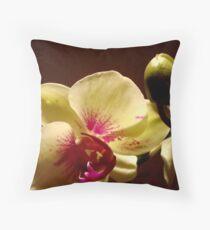ORCHID - phalaenopsis II   ^ Throw Pillow