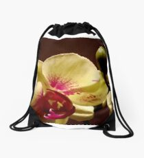 ORCHID - phalaenopsis II   ^ Drawstring Bag