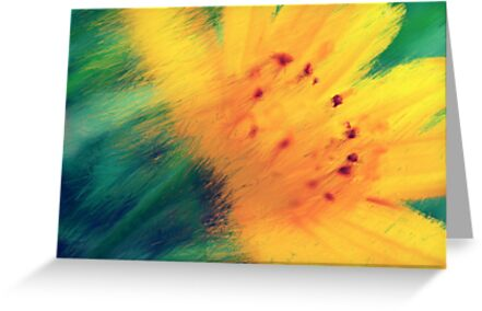 Overflow of bloom by islefox