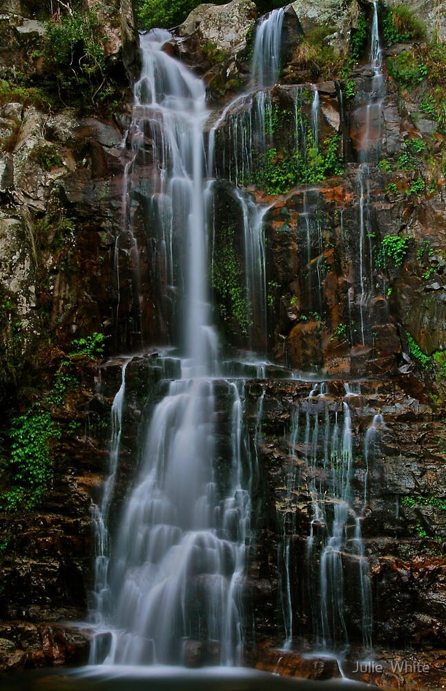 Minnamurra Falls. by Julie  White