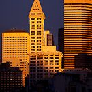 The golden hour... by Rene Fuller