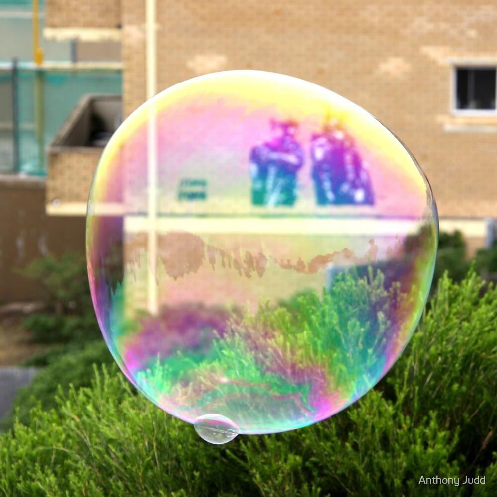 Bondi Bubble by Anthony Judd