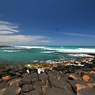 Port Fairy Rocks by adam