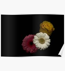 Pink, Yellow & White Flowers Poster