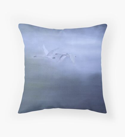 Fly Past Throw Pillow