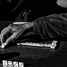 Domino Player by Luca Renoldi