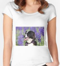 dog in a field of Blue lupin (Lupinus pilosus) flowers  Women's Fitted Scoop T-Shirt
