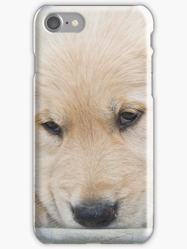 Puppy Eyes (IPhone Case) by Maria Dryfhout