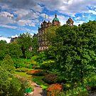 Garden in the City by Tom Gomez