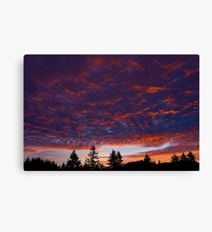 New Year Sunset Canvas Print