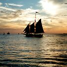 Sailing off into the sunset by Shawnuffdigital