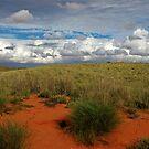 Red Kalahari sand by Rudi Venter