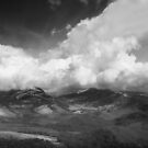 Munnar Landscapes by Dinni H