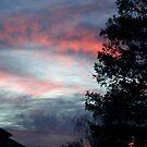 winter sunset by califpoppy1621