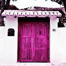 Spanish Door by Astrid Ewing Photography