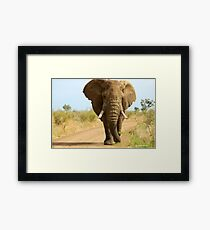 I'M RIGHT BEHIND YOU! - THE AFRICAN ELEPHANT – Loxodonta Africana Framed Print