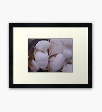 COTTON for the BOWL Framed Print