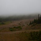 Mountain Fog by John  Sperry