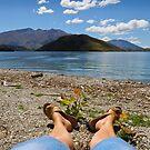 Summer at Wanaka by Jenny Setchell