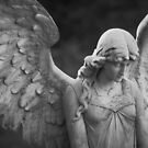 Solitary Angel by Jeff Hathaway