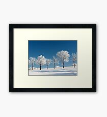 Frosty Trees on a clear Winter day Framed Print