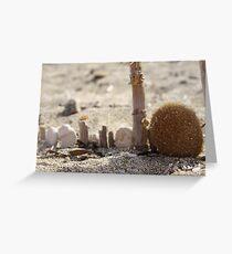 Crazy Beach Fence Greeting Card