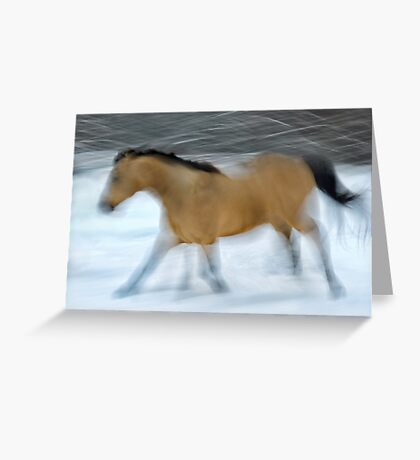On the Run  Greeting Card