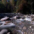 Rushing River by jadennyberg