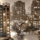 Snow Storm by jadennyberg
