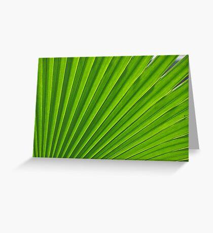fresh green leaf Greeting Card