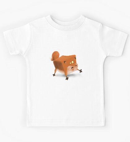 Box in a fox Kids Clothes