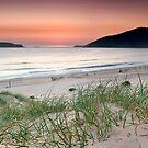Bennents Beach, Hawks Nest by Michael Howard