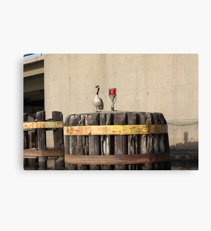 Goose on Barge Bumper Canvas Print