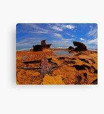 Rusted, Crusted..but not Trusted Canvas Print