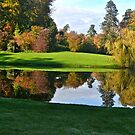 Fountains Abbey In Autumn by marieangel