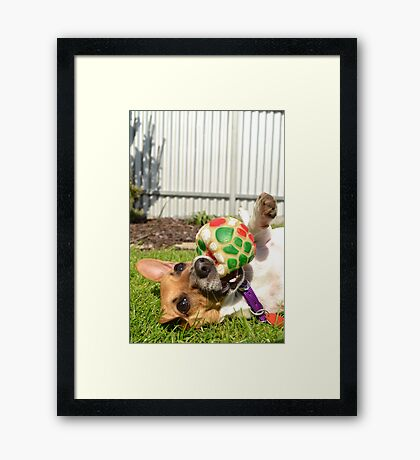 baby and her ball Framed Print