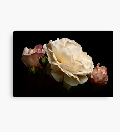 simply stunning Canvas Print