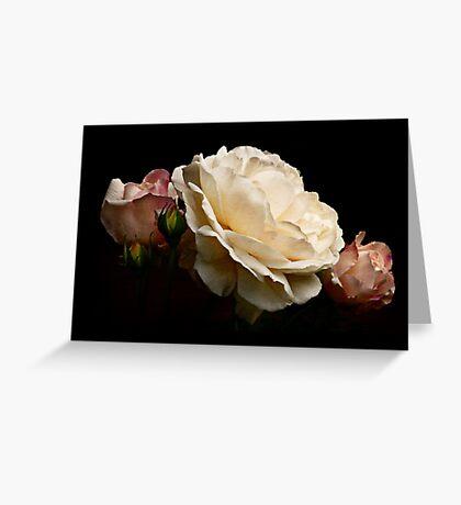 simply stunning Greeting Card