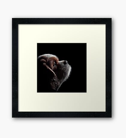 Pet Profile Framed Print