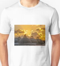 Domes of Old Istanbul T-Shirt