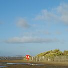 Southport Sand Dunes by James D