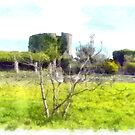 Rocca Cilento: garden and tower of the castle by Giuseppe Cocco