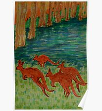 Kangaroos by the Flooded Forest Poster