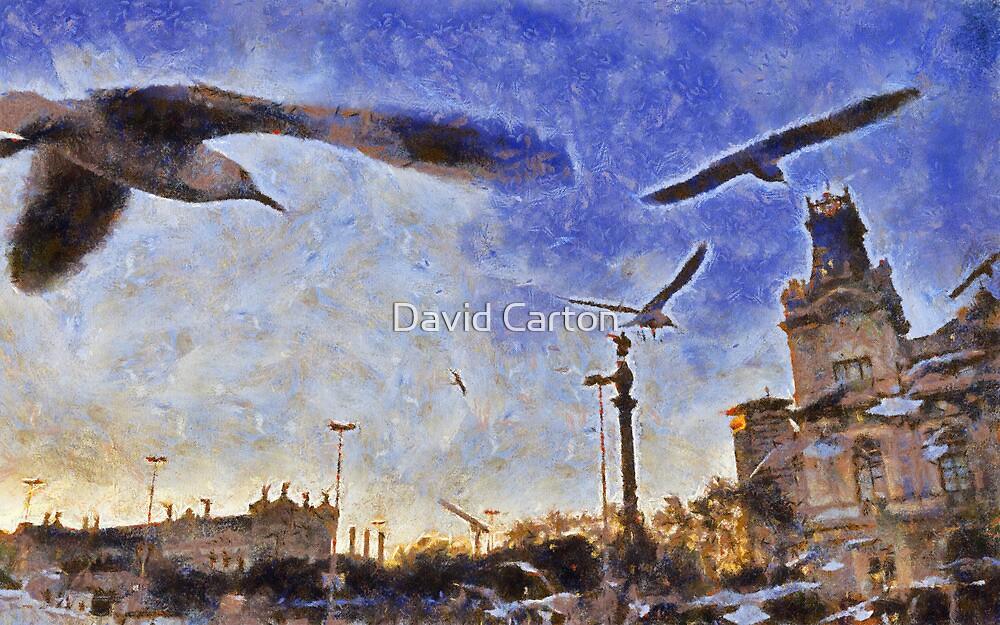 Birds, Barcelona port, Spain by David Carton
