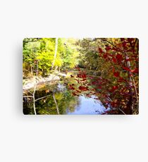 SILVER CREEK IN CLARKSVILLE, INDIANA Canvas Print
