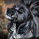 D-Dog by Sandra Guzman